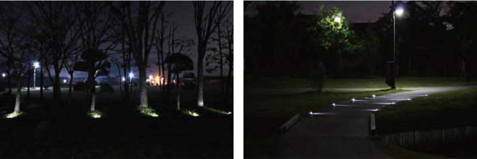 エコラ・ミニ・ガラス特徴画像